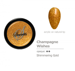 Gold Shimmer Acrylic color