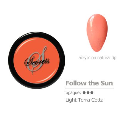 Terra Cotta acrylic color